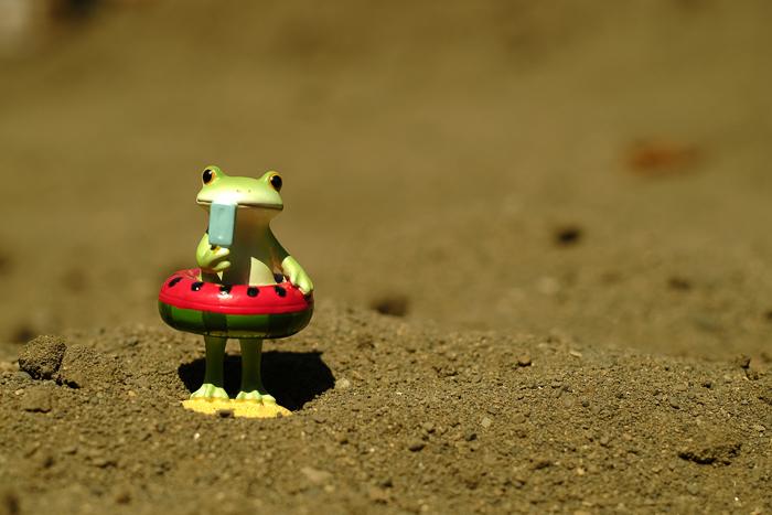 ツバキアキラが撮ったカエルのコポー。真夏のビーチで浮き輪を手に、アイスキャンディーを食べているコポタロウ。