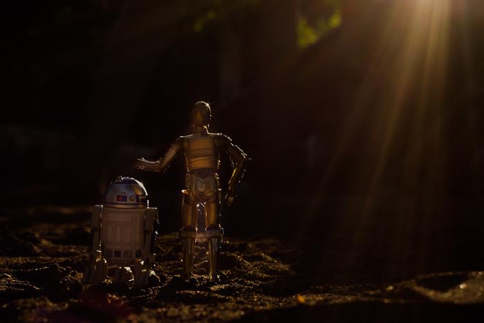 ツバキアキラが撮った、S.H.フィギュアーツのC-3POとR2-D2。後ろ姿のC-3POとR2-D2。