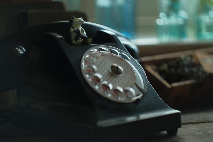 ツバキアキラが撮ったカエルのコポー。本物の黒電話と、電話をしているコポタロウ。