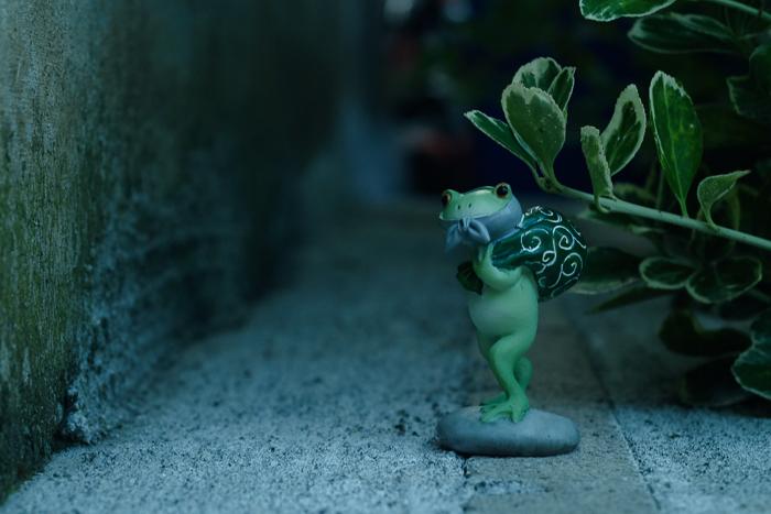 ツバキアキラが撮ったカエルのコポー。ちょうど良い感じの路地を見つけた、ドロボー・コポタロウ。