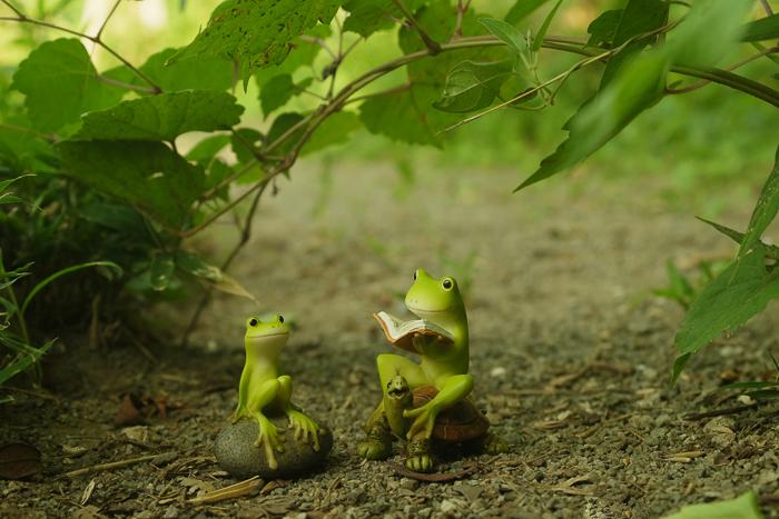 ツバキアキラが撮ったカエルのフィギュア。葉っぱのアーチの下で、本を読んでいるカエルさん達。
