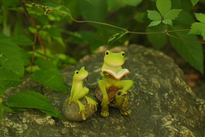 ツバキアキラが撮ったカエルのフィギュア。茂みの中の岩の上で難しい本を読んで貰っているカエルさん。