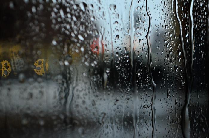 ツバキアキラが撮った、中原中也「春の雨」イメージ写真