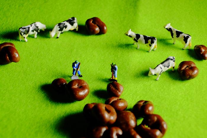 ミニチュア・ヒト写真、緑の草原、牛飼いと牛達