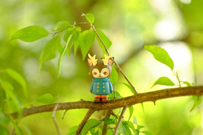 ツバキアキラが撮った、VAG・MORRIS、通称・つのねこ。木の上で涼んでいる、つのねこ。