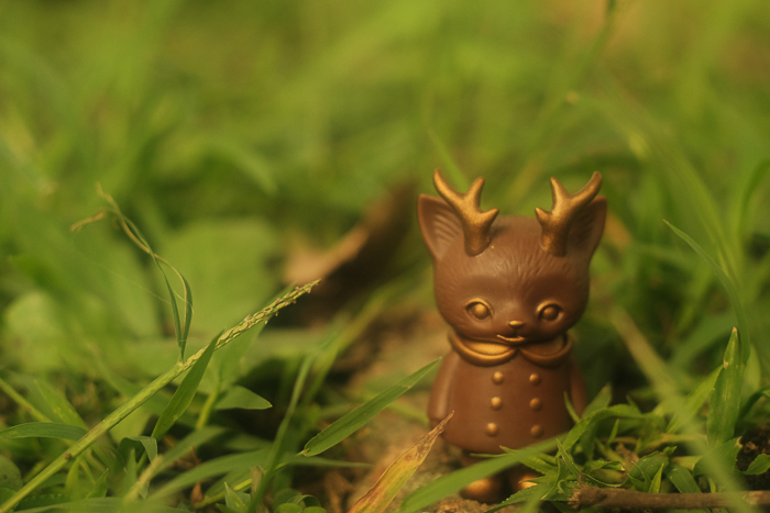 ツバキアキラが撮った、VAG・MORRIS、通称・つのねこ。おうちに帰りたくなってきたチョコちゃん。