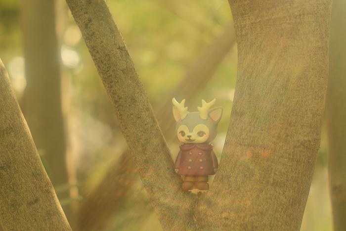 ツバキアキラが撮った、VAG・MORRIS、通称・つのねこ。上手に木登りをしているボルドーちゃん。
