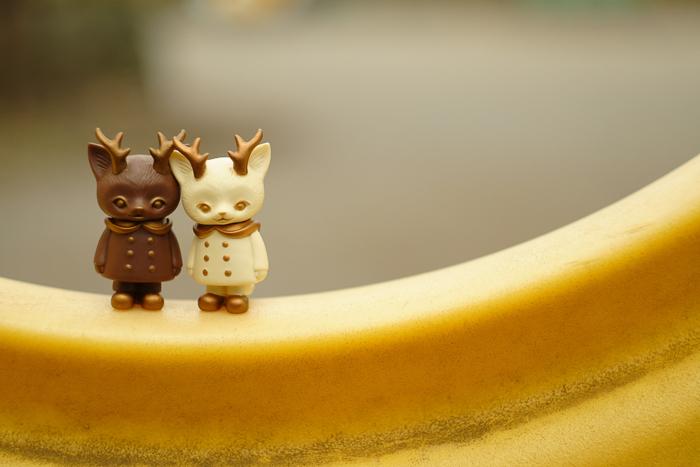 ツバキアキラが撮った、VAG・MORRIS、通称・つのねこ。第2弾のチョコちゃんと、郵便局限定のホワイトチョコちゃん。