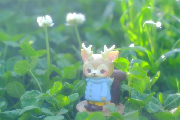 ツバキアキラが撮った、VAG・MORRIS、通称・つのねこ。背の高い、白いお花を見つけた、つのねこ。