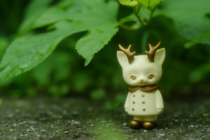 ツバキアキラが撮った、VAG・MORRIS、通称・つのねこ。葉っぱの下で雨宿りをしているホワイトちゃん。